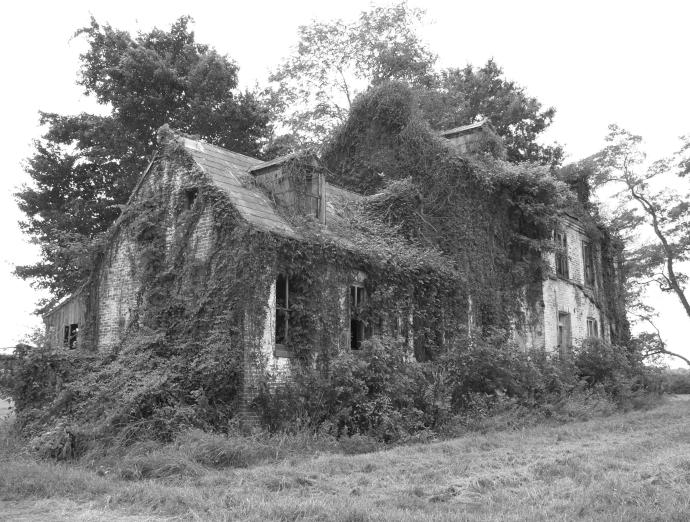 Chia house
