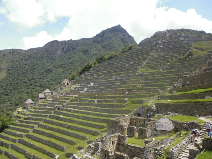 These terraces carved into the hillside at Machu Picchu were used for agricultural purposes.
