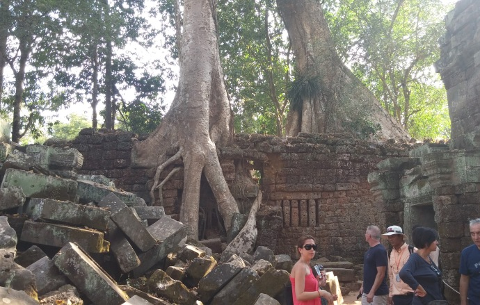 At the Ta Prohm temple complex, this is one of the many areas where nature has broken through the man-made construction.