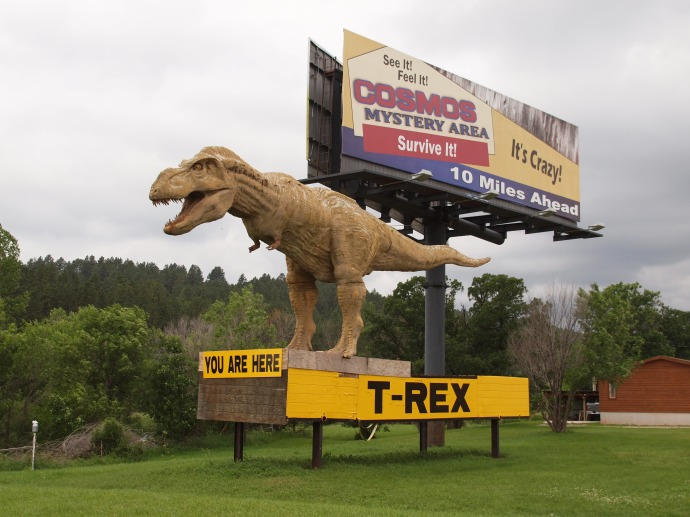 This replica of a t-rex stands outside the Dinosaur Museum, beckoning visitors to pull off Highway 16.