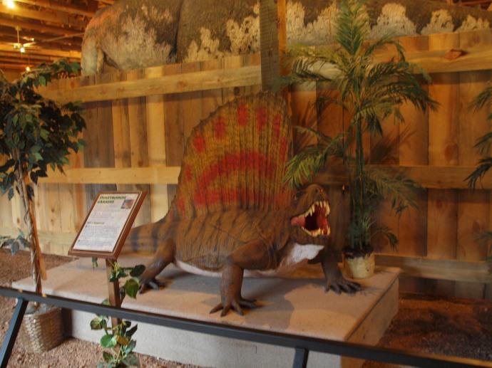 A dimetrodon grandis.