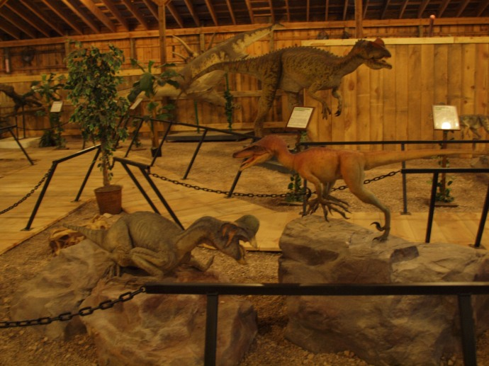 Some of the additional giant lizards on display.