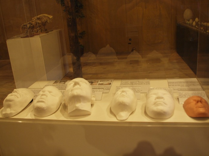 These death masks of living celebrities like Brad Pitt and Patrick Stewart are just a little creepy. :)