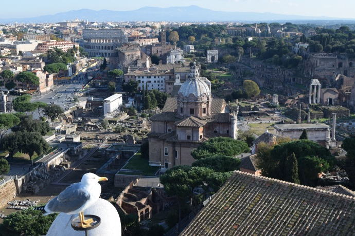 A bird's-eye view from the highest observation deck at the Vittorio Emanuele II Monument.
